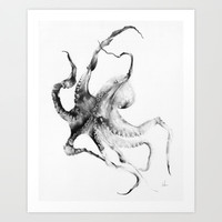 Octopus Art Print by Alexis Marcou