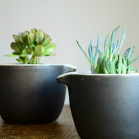 Vintage Black Bean Pot Planter Pair