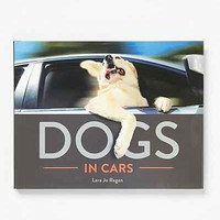 Dogs In Cars By Lara Jo Regan - Assorted One