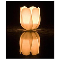 Tulip candle holder