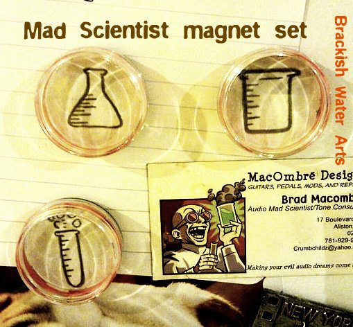 Mad Scientist Magnet Set