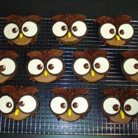 Owl cupcakes by mrsclox on Cake Central