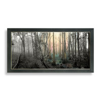 Forest Scene Wall Art