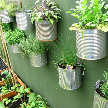 Hanging Herb Garden in Recycled Cans