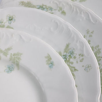 Cottage Style Plate Set/ Johnson Bros / Set of 4