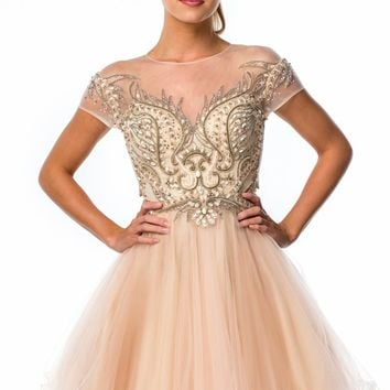 Terani Couture Prom 151P0012 Dress