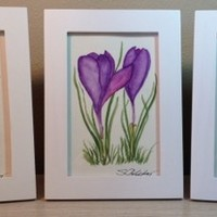 Paintings of Purple Crocus, 3, Framed, Original Watercolor Paintings