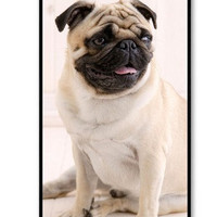 iPhone 4 case iPhone 4s case -  Pug Puppy Dog  iPhone Hard Case-graphic Iphone case