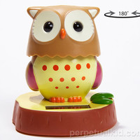 SUNNY OUTLOOK SOLAR OWL