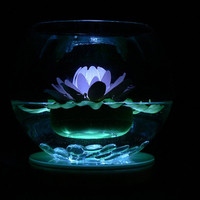 Multi Color Floating Glow Lily  (blue, white & amber lights)LED   $19