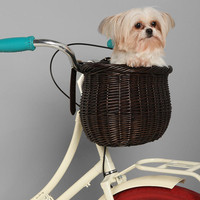 Bushel Bike Basket