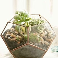 ABJ Glassworks Atlas Planter- Assorted One