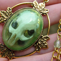 Real Rat Skull in Gold Shadowbox Necklace - Robin