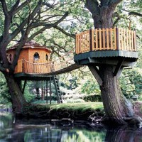 Tree House Connected Between 2 Trees!!