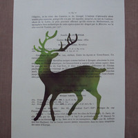 Vintage Book Page Large Deer of the Forest