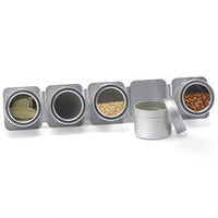 The Container Store > 5-Canister Magnetic Spice Rack