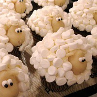 Bakery Ideas / Sheep cupcakes! So adorable!