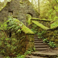 The Stone House - Forest Park Portland Oregon 6 x 9 Fine Art Photo - Archival Print