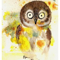 Owl - 8x10 Fine Art Print Adorable .. on Luulla