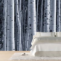 Aspen Birch Forest Wall Mural | Wall Mural | Wallpaper Mural | Photo Wallpaper
