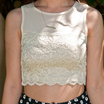Ivory Floral Laced Mesh Crop Top Shirt – Gold Soul