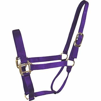 DuMOR® Classic Purple Halter for Medium Horse