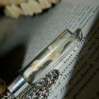 Articulated Cat Claw Necklace