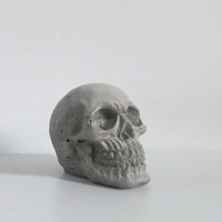concrete skull / raw