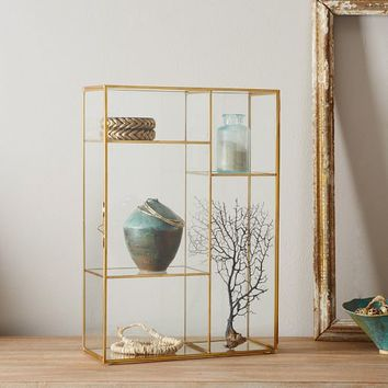 Gold Shadow Box  Display Case
