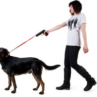 Retractable gun dog snap leash