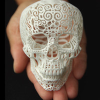 Skull Sculpture Crania Anatomica Filigre (small)