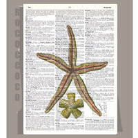 STARFISH ARTWORK printed on Repurposed Vintage by RococcoCo