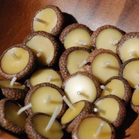 10 Acorn Cap Candles - Floating - Beeswax - Original