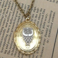 Steampunk Owl (0916a) Locket Necklace Vintage Style Original Design