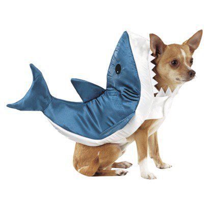 Pet Costume - Shark