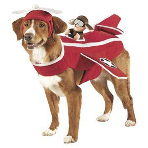 Pet Rider Costume - Airplane MEDIUM Dog Halloween Costume Dress Up NEW!