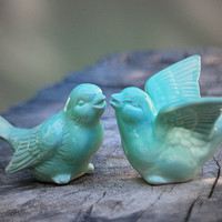 Bird Wedding cake toppers in mint green love birds by claylicious