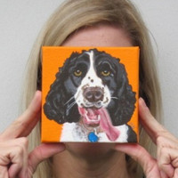 Springer Spaniel Custom Dog Portraits