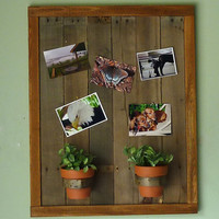 Reclaimed Wood Photo Display - Plant Holder