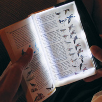 LED Book Light with Rechargeable Battery @ Sharper Image