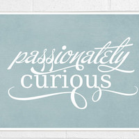 Passionately Curious -Back to School Inspirational Albert Einsten Quote - Smoke Blue Grey Gray - 10x8 print - under 20