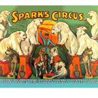 Sparks Circus Poster at AllPosters.com
