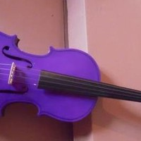 Buy violin, solid wood colorful violin,purple,free violin case,free shipping at Aliexpress.com