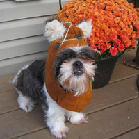 Medium Dog Leather Hood/Halloween Costume