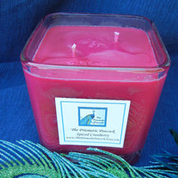 Spiced Cranberry Soy Candle in Contemporary Glass Cube