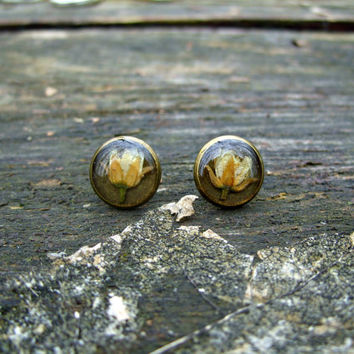Real flower earrings - Tiny linden blossoms - Bronze earring studs - Pressed flower ear posts - Nature inspired jewelry - Botanical earrings