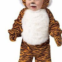 Toddler Cute Tiger Animal Halloween Holiday Costume Party (Size: 24M)