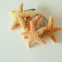 Starfish Hair Clip Mermaid Accessory