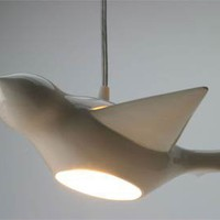 Perch! - Early Bird Pendant Light