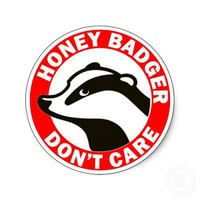 Honey Badger Don't Care Round Stickers from Zazzle.com